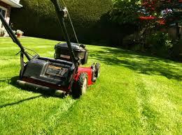 mulching mower_1